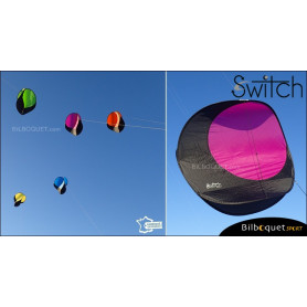 Switch - Cerf-volant monofil pilotable - VIOLET
