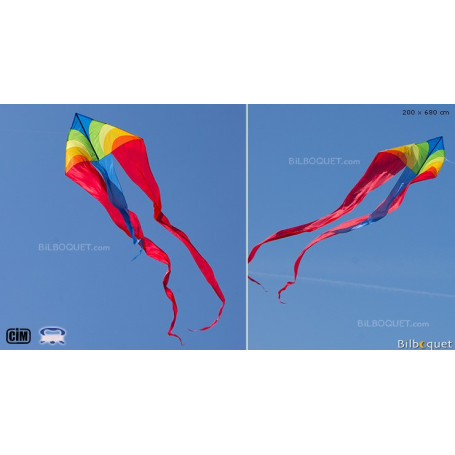 F-Tail Dart Arc-en-ciel Grand cerf-volant monofil