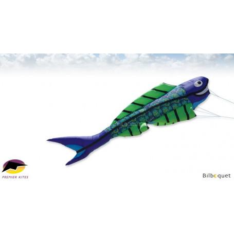 Mega Flying Fish par Juergen Ebbinghaus - Cool Orbit