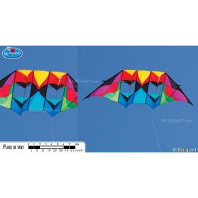 Cerf-volant Double Delta Conyne Stratosphere