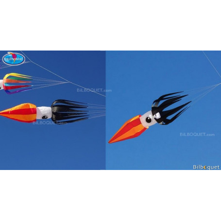 Flying Squid Black 11ft - Calamar Volant 335cm