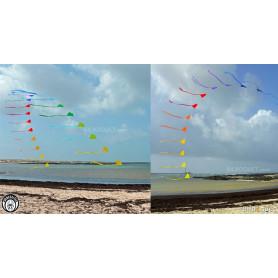 Heaven's Gate - Arche de 20 cerfs-volants Eddy
