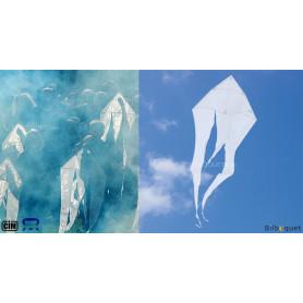 Cerf-volant monofil F-Tail XXS Creative