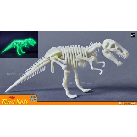 T-Rex phosphorescent - Terra Kids
