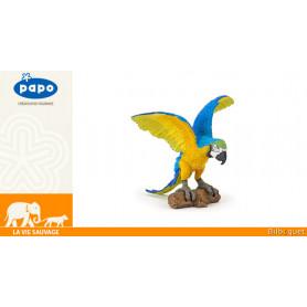 Perroquet Ara bleu - La vie sauvage