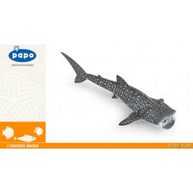 Requin baleine - L'univers marin