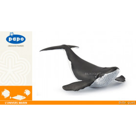 Baleineau - L'univers marin