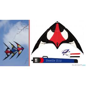 Cerf-volant acrobatique Beetle X15