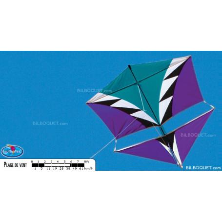 Cerf-volant monofil Vertical Visuals' Roller