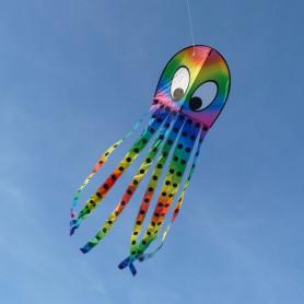 Monofil Pieuvre rainbow