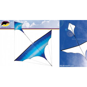 Cerf-volant monofil Canard par Carsten Domann - Cool